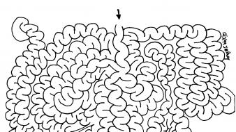 Black and white brain drawings maze minimalistic wallpaper