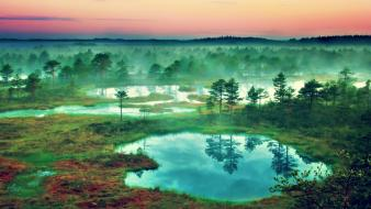 Estonia fog landscapes mist nature wallpaper