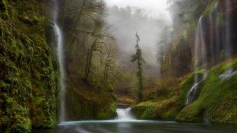 Forests fog waterfalls rivers the early morning wallpaper