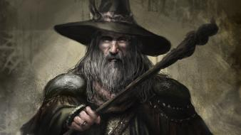 Gandalf the lord of rings beard wizards staff Wallpaper