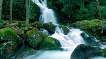 Moss nature rocks waterfalls wallpaper