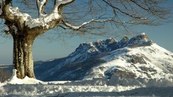 Mountains landscapes winter snow trees spain wallpaper