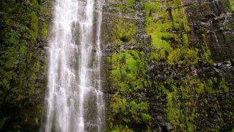 Nature hawaii cliffs usa moss hdr photography waterfalls wallpaper
