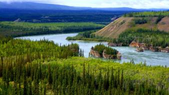 Nature trees forests hills valleys rivers yukon wallpaper
