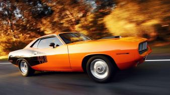 Plymouth 440 cuda cars muscle Wallpaper