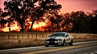 Sunset cars ford roads plain mustang shelby gt500 Wallpaper
