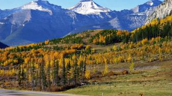 Trees autumn white canada roads snowy peaks wallpaper
