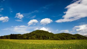 Austria europe fields forests landscapes Wallpaper