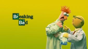 Beaker breaking bad muppet wallpaper