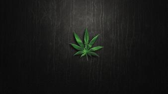 Marijuana plants blunt Wallpaper