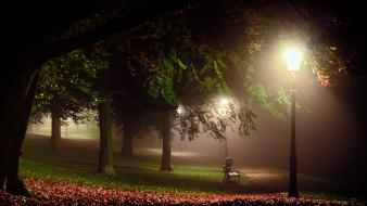 Nocturnal calm grass green lamppost wallpaper