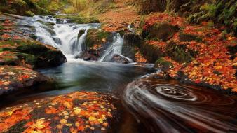 Orange rocks plants moss waterfalls colors creek Wallpaper