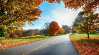 Autumn in country road wallpaper