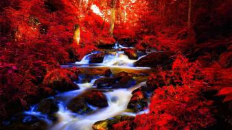 Autumn red streams riverside rivers forest wallpaper