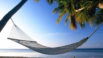 Beaches hammock nature palm trees wallpaper