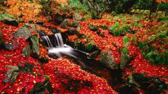 Beautiful autumn waterfall wallpaper