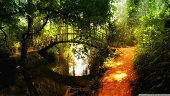 Bridges forests nature reflections wallpaper