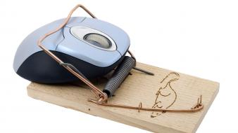 Funny electronics mouse trap mice white background computer wallpaper
