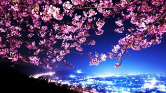 Japan cherry blossoms city lights cityscapes wallpaper