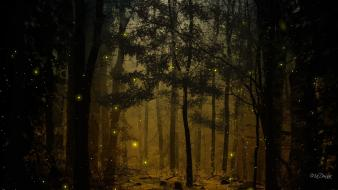 Landscapes nature trees wood forests woods fireflies wallpaper