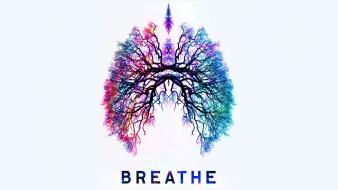 Trees lungs breath wallpaper