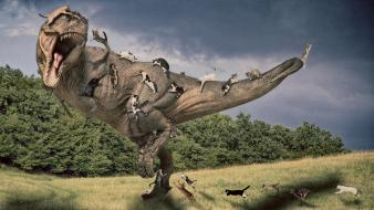 Tyrannosaurus rex artwork cats photo manipulation wallpaper
