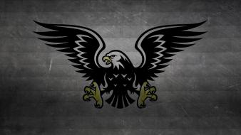 Wings birds predator hawk logos claws wallpaper