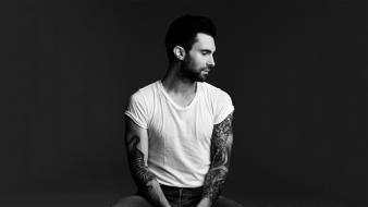 Adam levine 2013 Wallpaper
