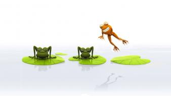Animals frogs different wallpaper
