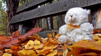 Autumn bench leaves loneliness teddy bears wallpaper
