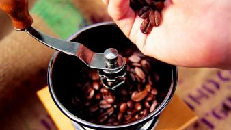 Coffee food brown beans drinking and milk Wallpaper