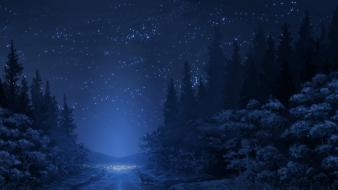 Drawings forests foxes night path Wallpaper