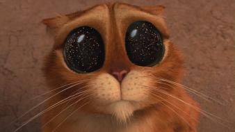 Eyes movies cats shrek big puss in boots Wallpaper