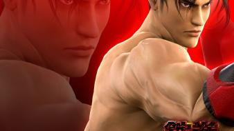 Fighting 69 tekken 6 5 game namco bandai wallpaper