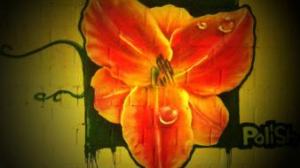 Flowers street art graffiti wallpaper