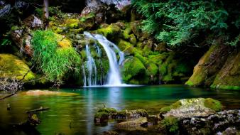 Forests waterfalls Wallpaper