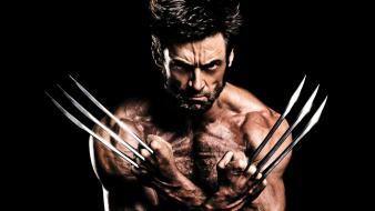 Hugh jackman the wolverine 2013 wallpaper