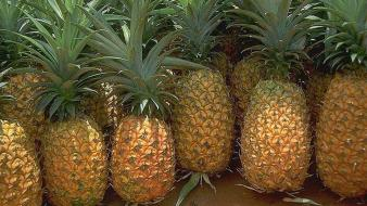 Pineapples fruits strong fresh vitamins wallpaper