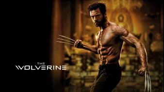 The wolverine hd s wallpaper