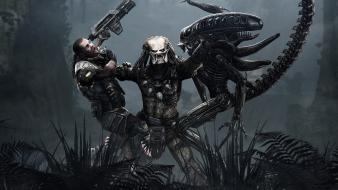 Aliens Vs Predator Game wallpaper