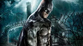 Batman Arkham Asylum Game wallpaper
