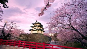 Hirosaki Castle Japan wallpaper