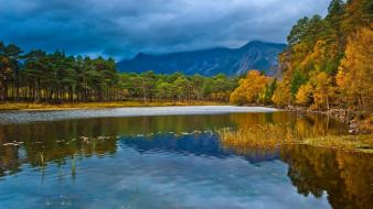 Landscapes nature trees lakes Wallpaper