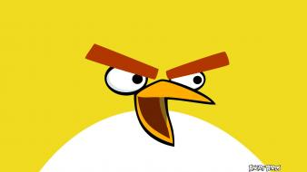 Yellow Bird In Angry Birds wallpaper