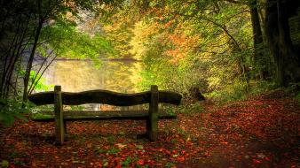 Bench lakes leaves nature trees wallpaper
