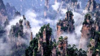 China forests national nature park wallpaper