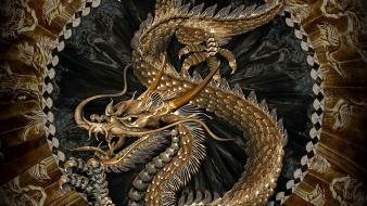 Chinese dragon pictures wallpaper