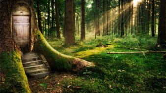 Door fairy tales forests grass houses Wallpaper