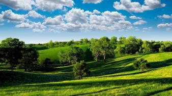 Green clouds trees hills summer shadows meadows sky Wallpaper