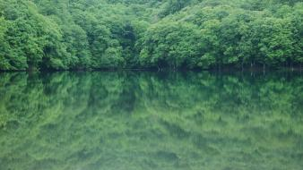Green water japan landscapes trees lakes rivers wallpaper